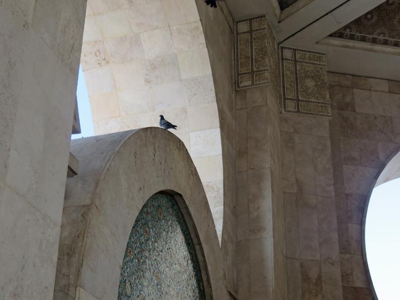 hassan-II-mosque-12