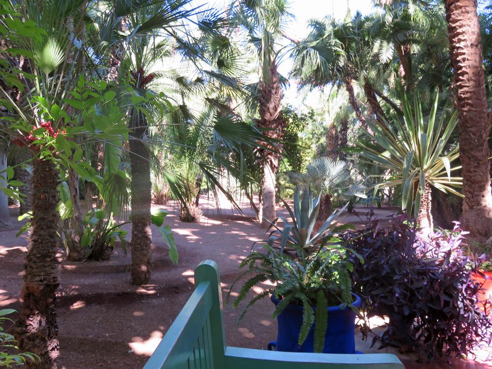 Jardin majorelle in marrakesh works as a memorial to yves for Jardin yves saint laurent