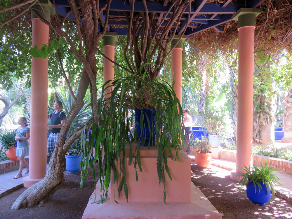 Jardin majorelle in marrakesh works as a memorial to yves for Jardin yves saint laurent